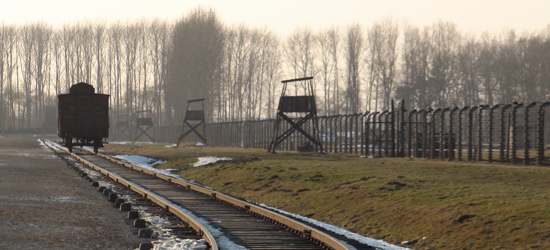 Auschwitz 2015 Photo Baptiste Denis